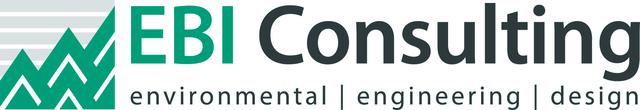 EBI Consulting logo